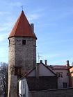 Tallin Torn 105 x 140