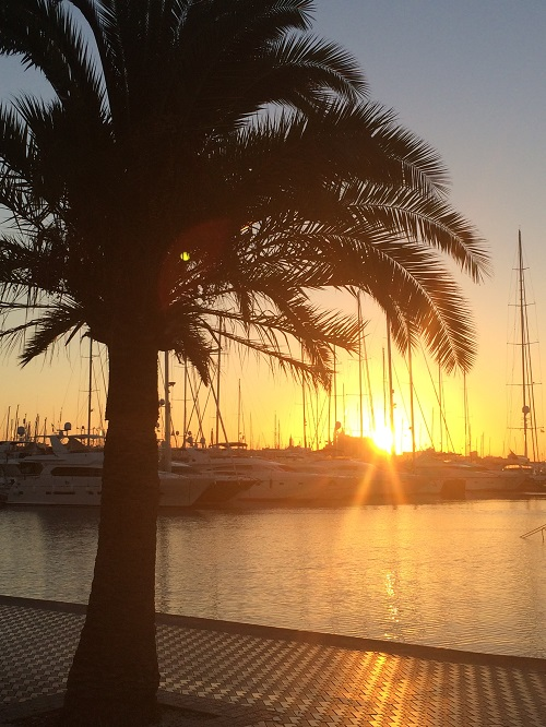 Mallorca Palma hamn small