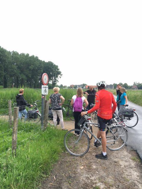 Cyklar grupp