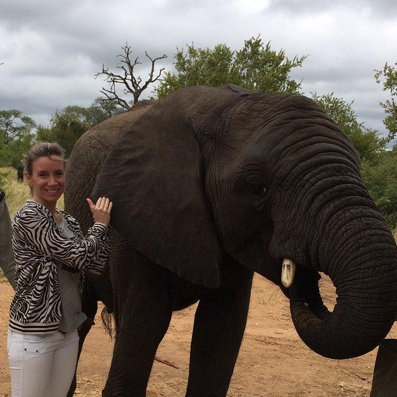 Elefant (002)