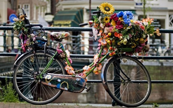 Amsterdam - cykel