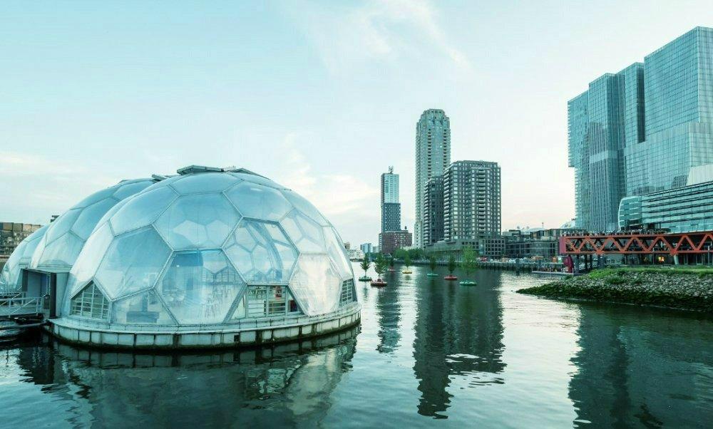 Rotterdam Bubbles2