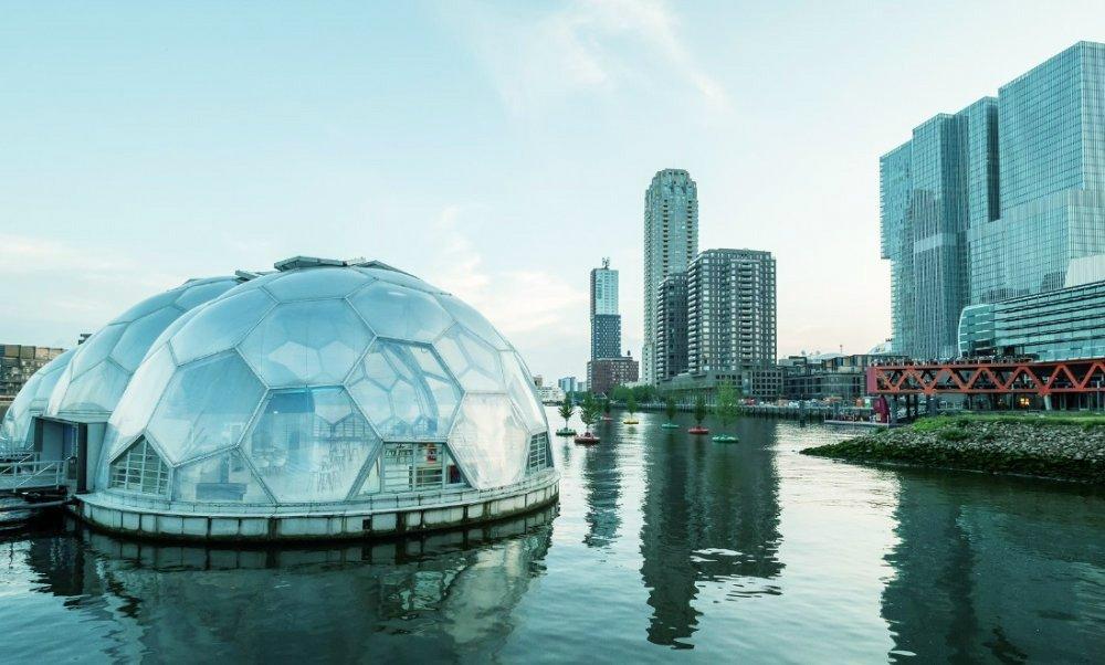 Rotterdam Bubbles