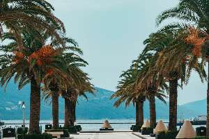 Montenegr_5