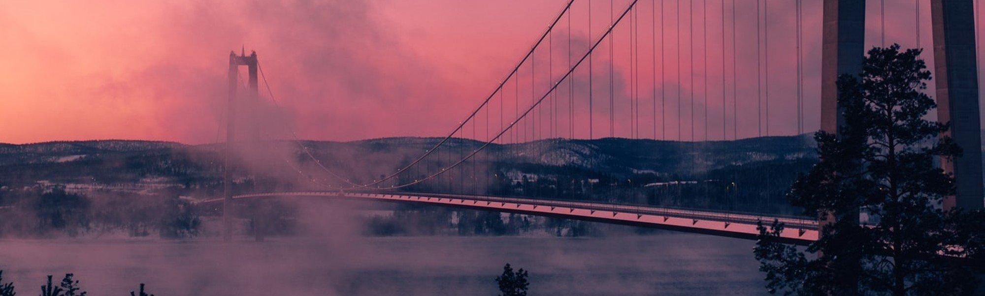 Höga kusten bron konferens
